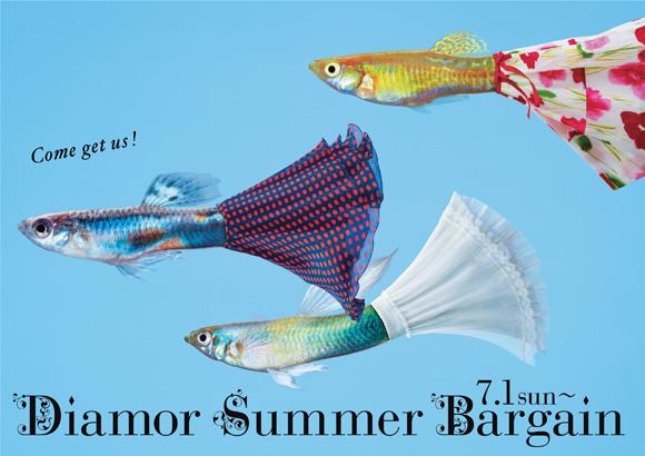 2007_2_diamor_summer.jpg